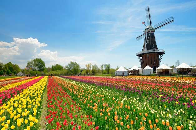 tulip-time-festival-holland-michigan